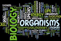 Biology-wordle